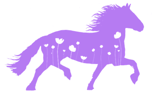 Fannys Häst och Hälsa